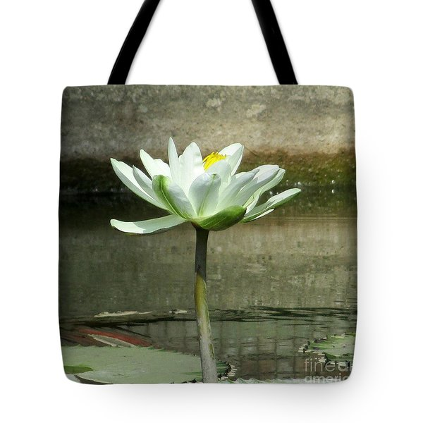 Tote Bag featuring the photograph White Water Lily 2 by Randall Weidner