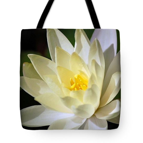 White Water Lily Tote Bag by Donna Bentley