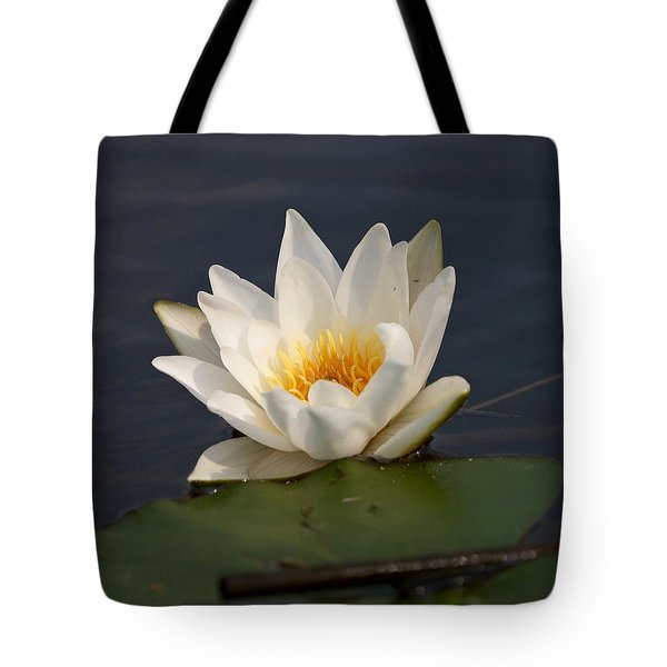 Tote Bag featuring the photograph White Waterlily 1 by Jouko Lehto