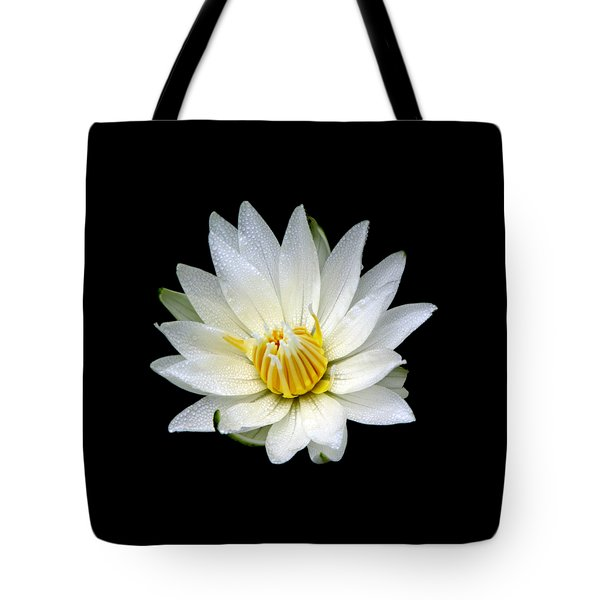 Tote Bag featuring the photograph White Waterlily With Dewdrops by Rose Santuci-Sofranko
