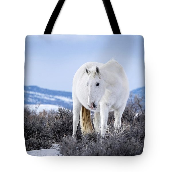 White Wild Horse Mystic Of Sand Wash Basin Tote Bag