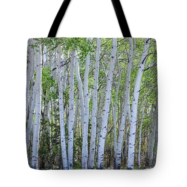 White Wilderness Tote Bag by James BO Insogna