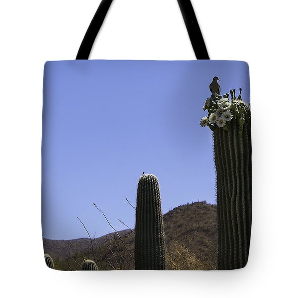 Tote Bag featuring the photograph White Wing Dove by Lynn Geoffroy