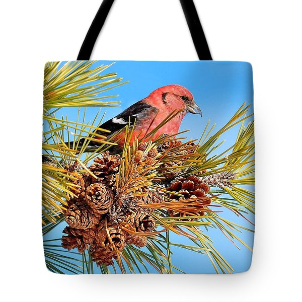 Tote Bag featuring the photograph White-winged Crossbill by Debbie Stahre