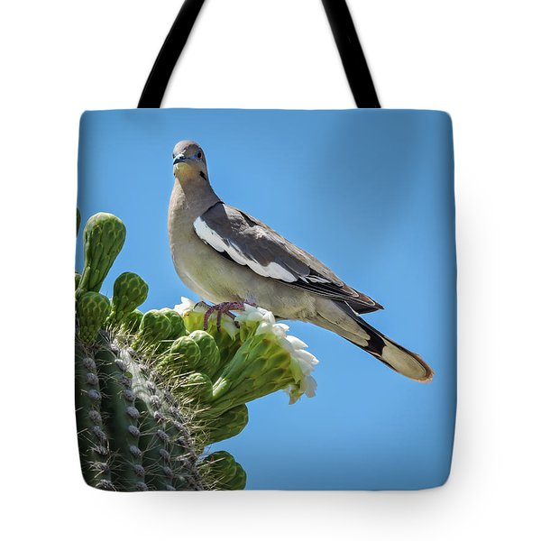 Tote Bag featuring the photograph White Winged Dove On Cactus Flower by Penny Lisowski