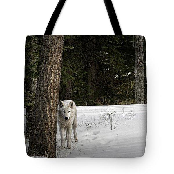 White Wolf Tote Bag by Brad Allen Fine Art