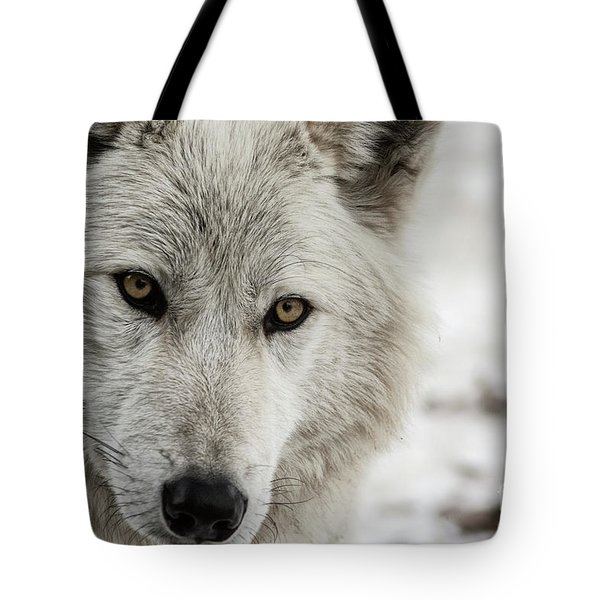 White Wolf II Tote Bag