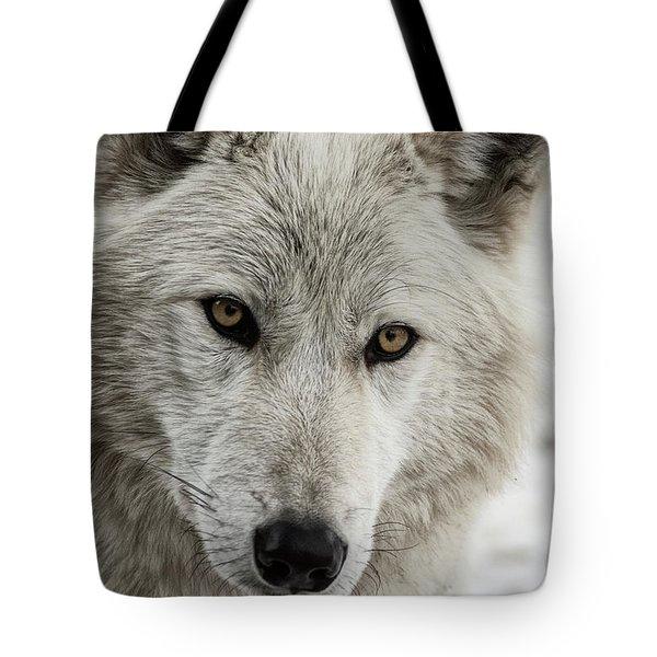 White Wolf II Tote Bag