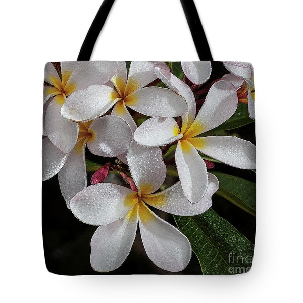 White/yellow Plumerias In Bloom Tote Bag