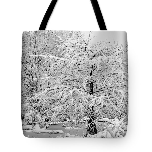 Whiteout In The Wetlands Tote Bag