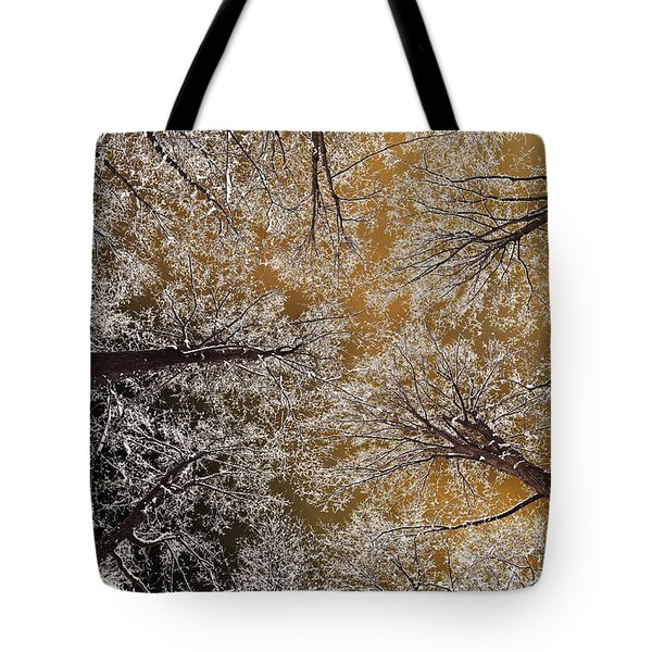 Tote Bag featuring the photograph Whiteout by Tony Beck