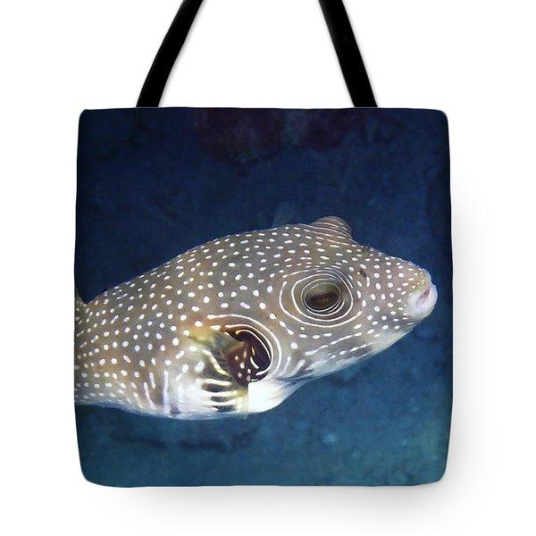 Whitespotted Pufferfish Closeup Tote Bag