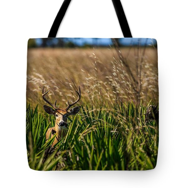 Whitetail Tote Bag