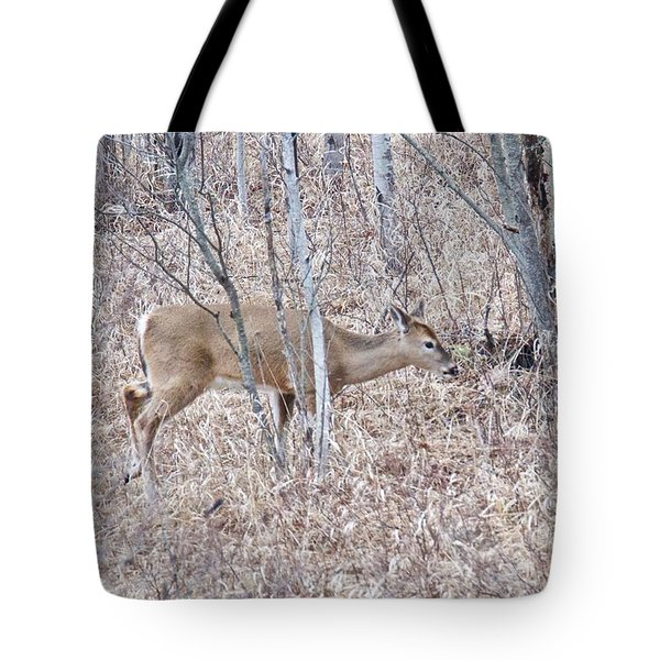 Tote Bag featuring the photograph Whitetail Deer 1171 by Michael Peychich