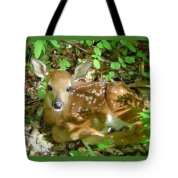 Whitetail Fawn II Tote Bag