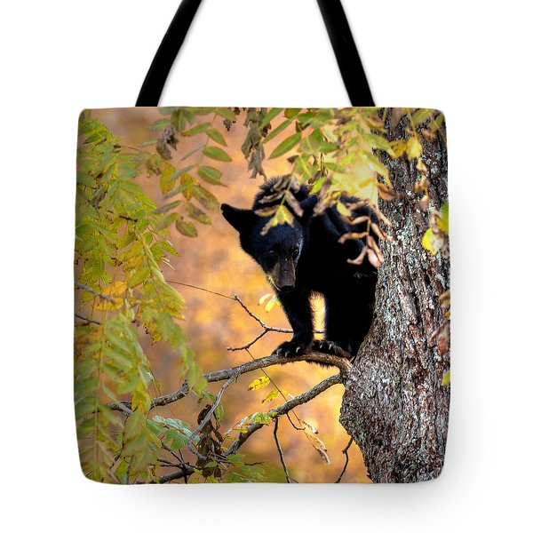 Who Are You Looking At Tote Bag