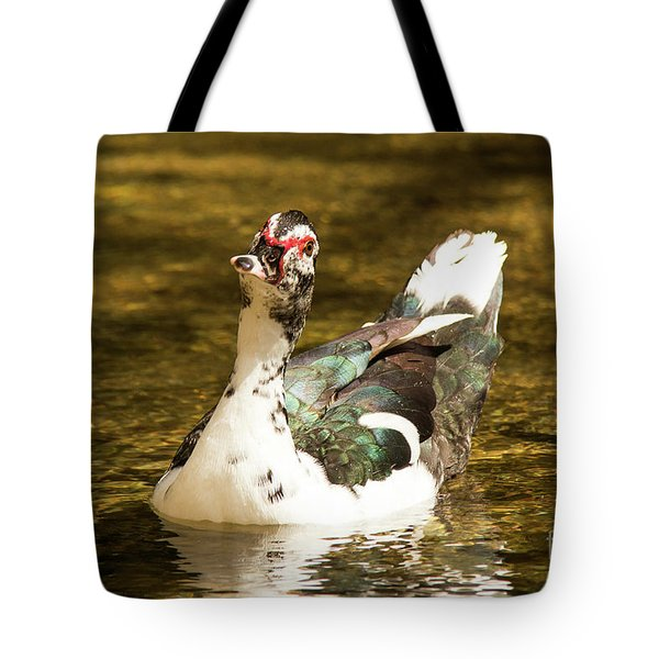 Who Me Wildlife Art By Kaylyn Franks Tote Bag