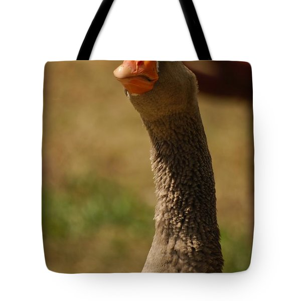 Tote Bag featuring the photograph Who...me by Ramona Whiteaker