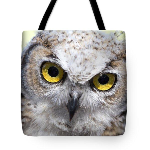 Whooo Tote Bag