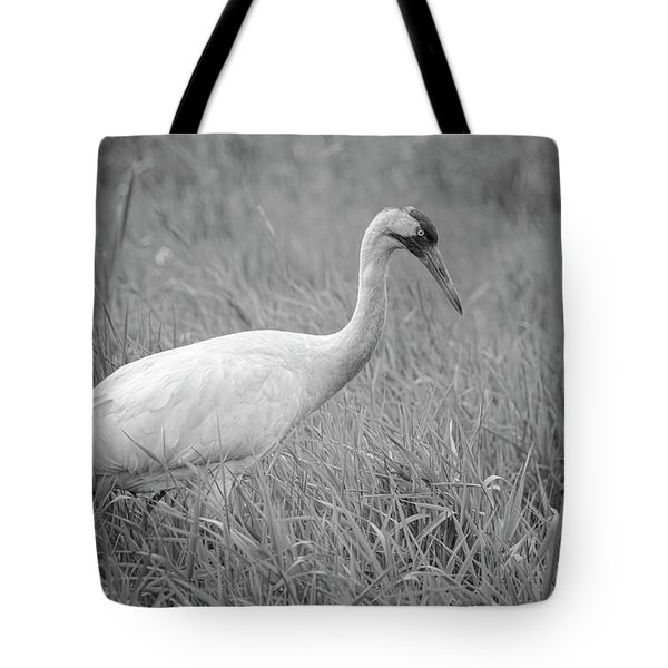 Whooping Crane 2017-4 Tote Bag by Thomas Young