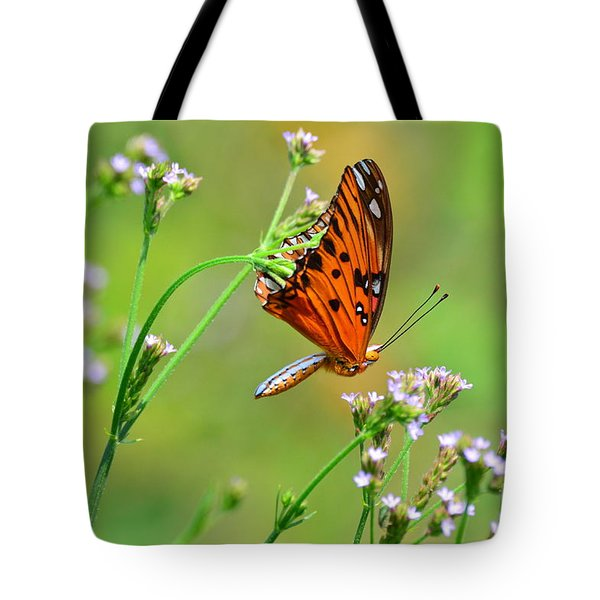 Tote Bag featuring the photograph Whoops by Kathy Gibbons