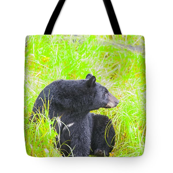 Who's There Tote Bag by Harold Piskiel