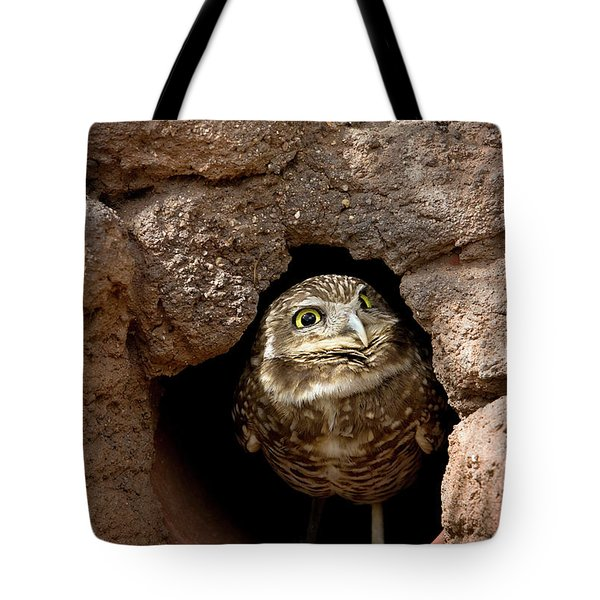 Who's There Tote Bag by Phyllis Denton