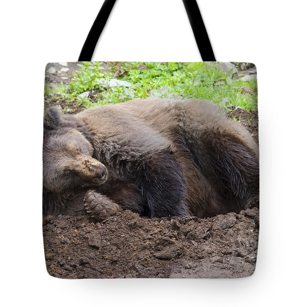 Whose Making Noise Tote Bag
