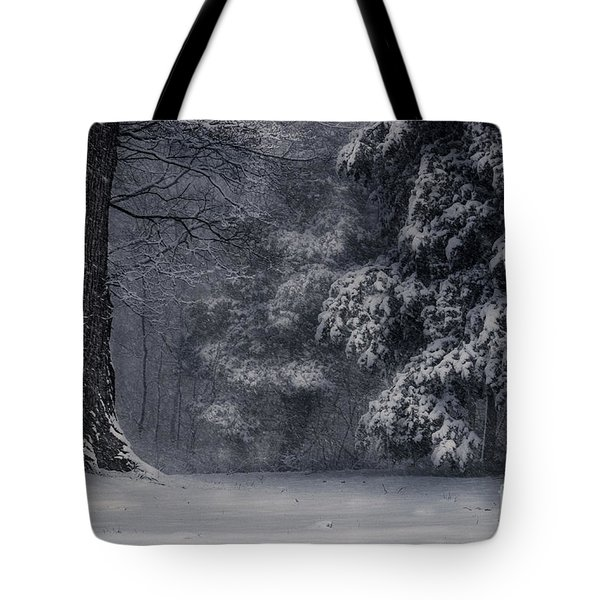 Whose Woods These Are I Think I Know Tote Bag