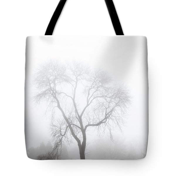 Wickapogue Fog Tote Bag by Steve Gravano