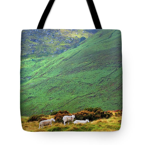 Tote Bag featuring the photograph Wicklow Pastoral by Jenny Rainbow