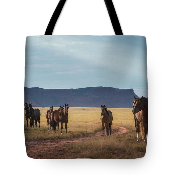Wide Open Spaces Tote Bag