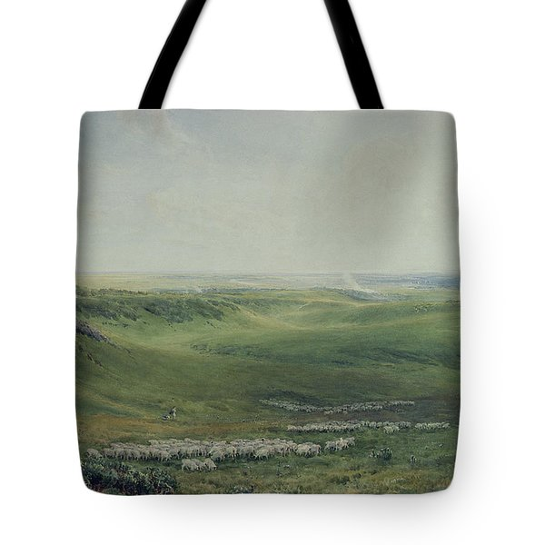 Wide Pastures Tote Bag by Thomas Collier