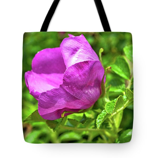Wild Alaskan Rose Tote Bag
