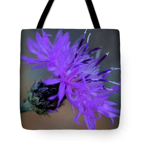 Wild And Beautiful 32 Tote Bag