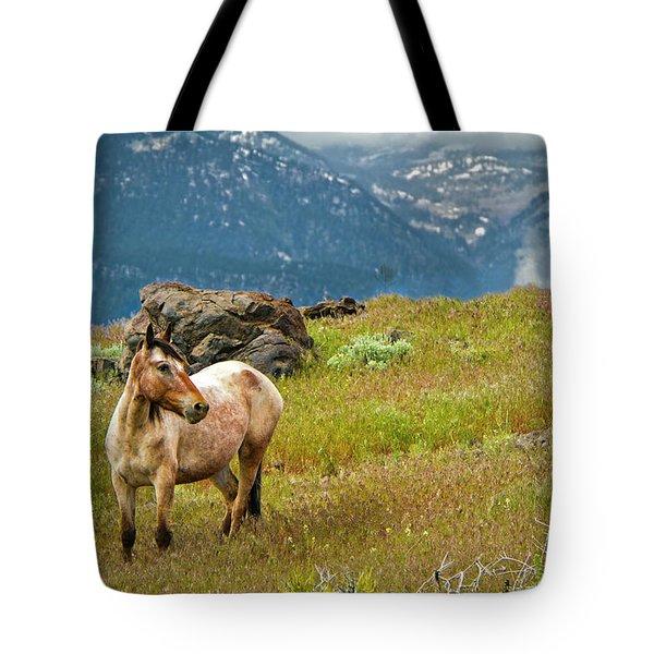 Wild Appaloosa Horse Tote Bag