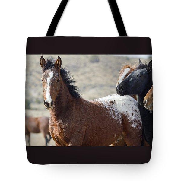 Wild Appaloosa Mustang Horse Tote Bag