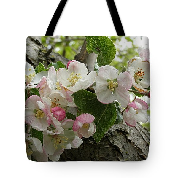 Tote Bag featuring the photograph Wild Apple Blossoms by Angie Rea