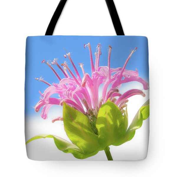 Wild Bergamot Or  Bee Balm Tote Bag by Jim Hughes