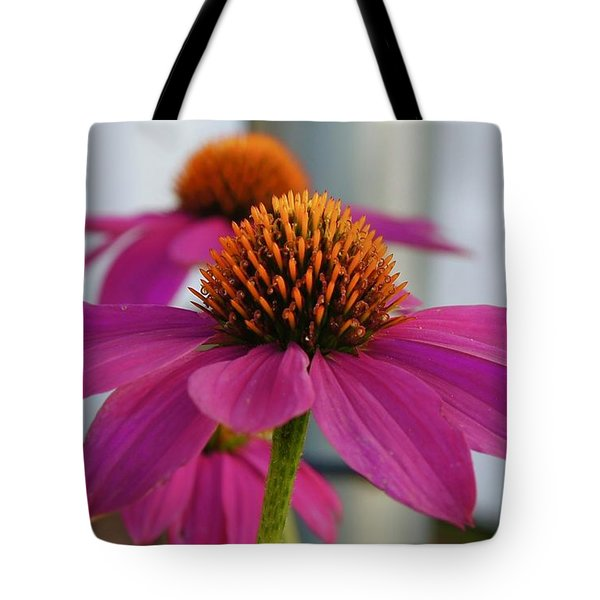 Wild Berry Coneflower Tote Bag
