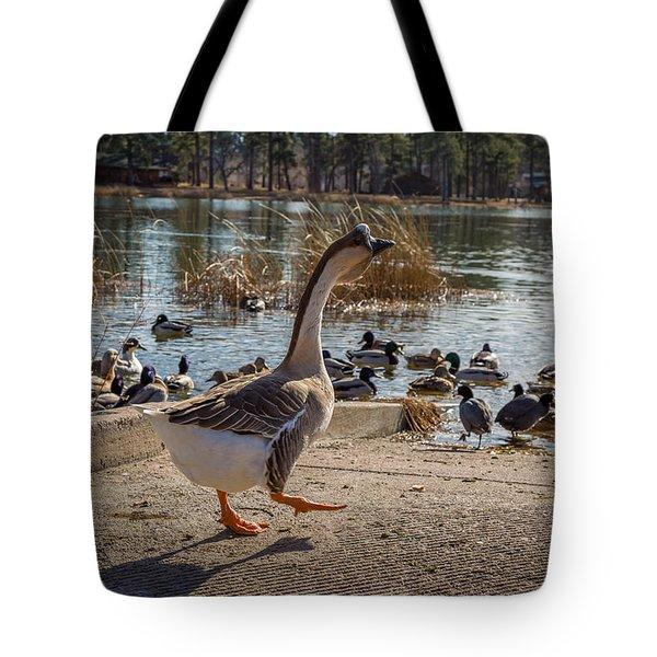 Wild Birds #1 Tote Bag