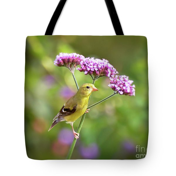 Tote Bag featuring the photograph Wild Birds - Female Goldfinch by Kerri Farley