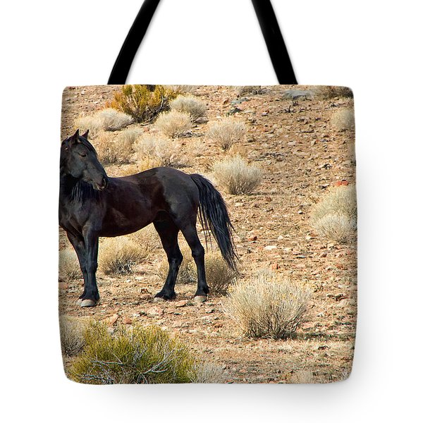 Wild Black Mustang Stallion Tote Bag