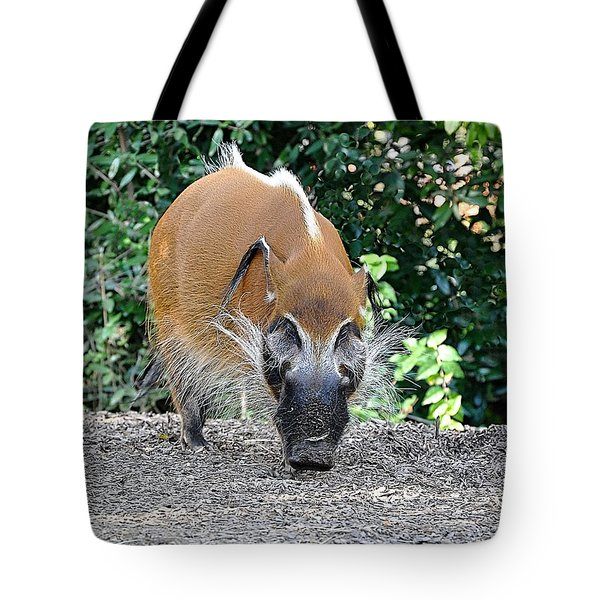 Wild Boar Tote Bag by Jan Amiss Photography