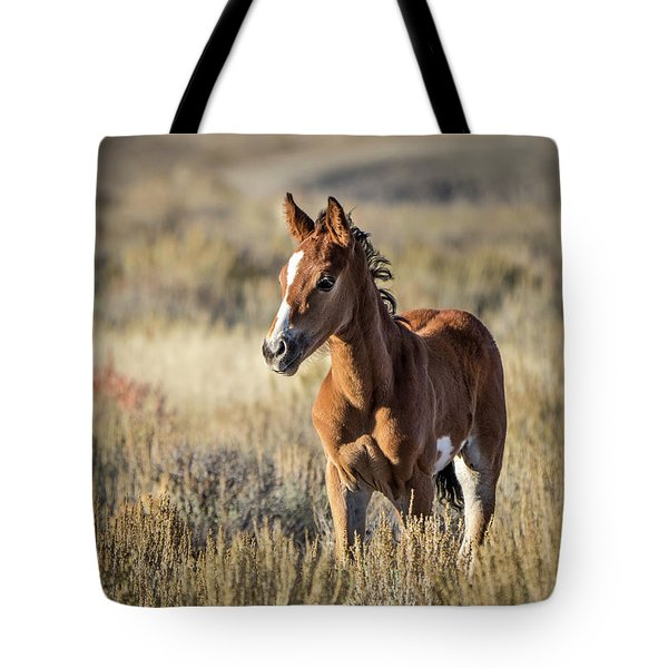 Wild Colt In Sand Wash Basin - Northwest Colorado Tote Bag