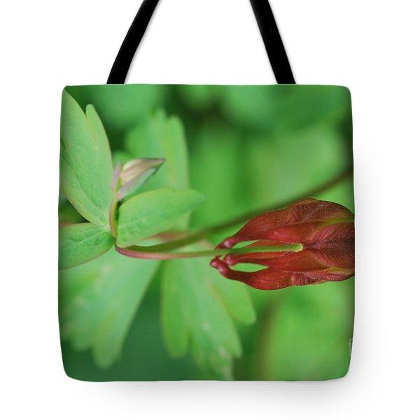 Wild Columbine Tote Bag by Tim Good