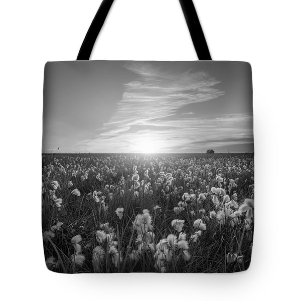 Wild Cotton Field In Iceland Bw Tote Bag