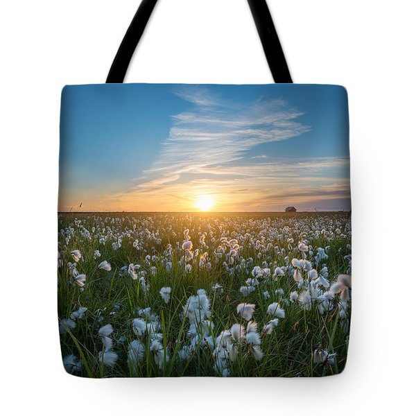 Wild Cotton Field In Iceland  Tote Bag