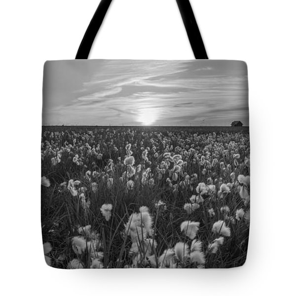 Wild Cotton Field Panorama Bw Tote Bag