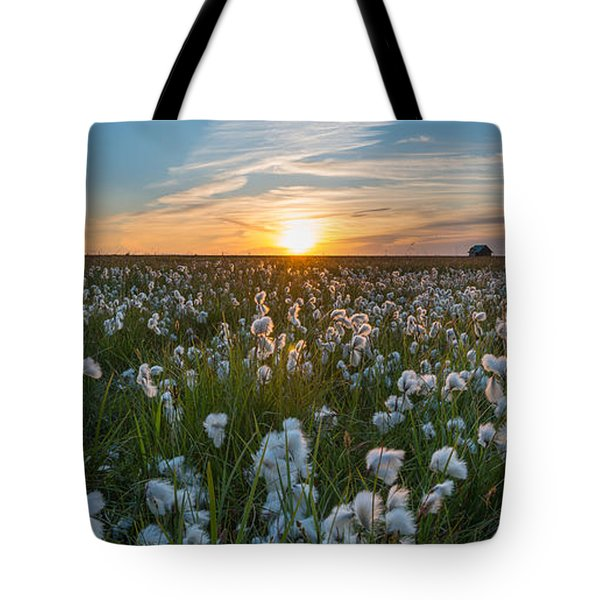 Wild Cotton Field Panorama  Tote Bag